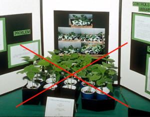 live plant-web